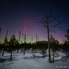 Kodumaised virmalised / Northern Lights in Estonia