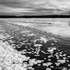 Jäälilled jõel MV / Frost Flowers on the River B&W