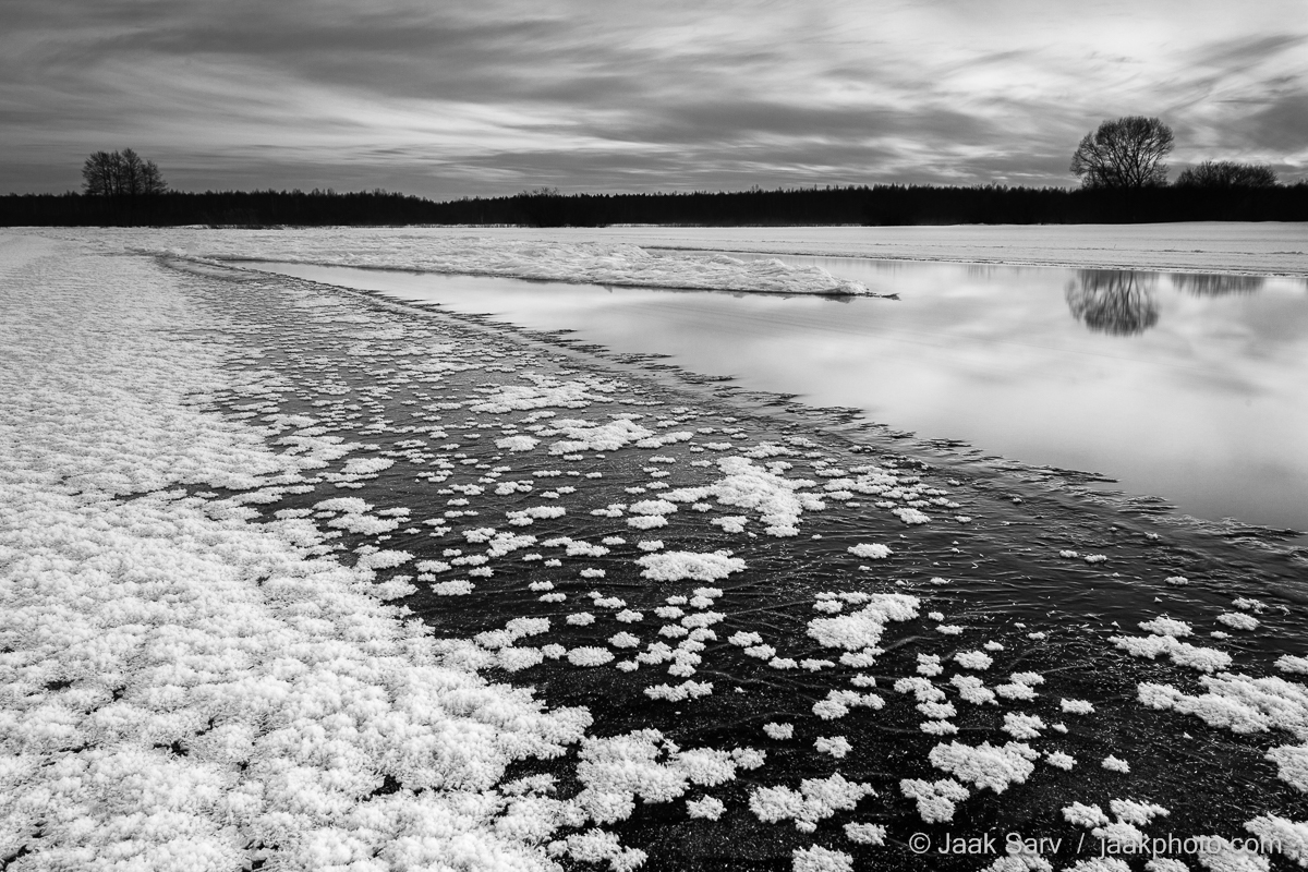 Baltics Canon Eesti Estonia Europe Jaak Sarv Suur-Emajõgi black black and white evening frost flowers gray hall ice ice flowers jää jäälilled jõgi landscape loodus loodusfoto looduspilt lumi maastik must mustvalge nature nordic northern photography puud päikeseloojang river sky snow sunset taevas talv trees valge vesi water white wildlife winter õhtu
