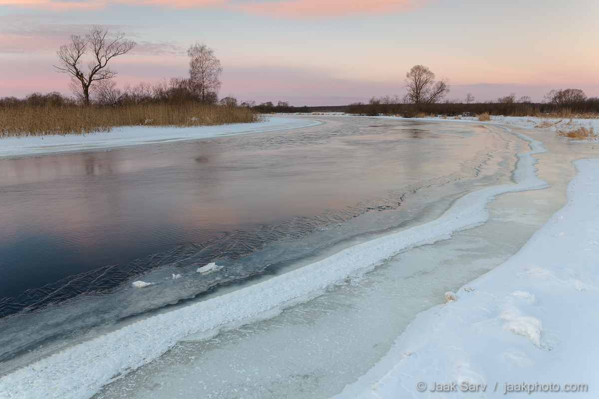Baltics Canon Eesti Estonia Europe Jaak Sarv Suur-Emajõgi beautiful blue cold colorful freezing hommik ice ilus jää jõgi karge külm landscape lilla loodus loodusfoto looduspilt lumi maastik mirror morning nature nordic northern peegeldus photography pink purple päikesetõus reflection river roosa sinine snow sunrise talv valge violet violetne värviline white wildlife winter